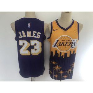 Los Angeles Lakers LeBron James Purple Gold Jersey